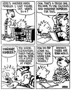 calvin-hobbes-imaginary numbers